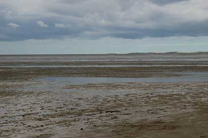 The Broomway